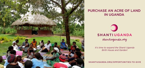 shantiuganda_opportunities-to-give_land